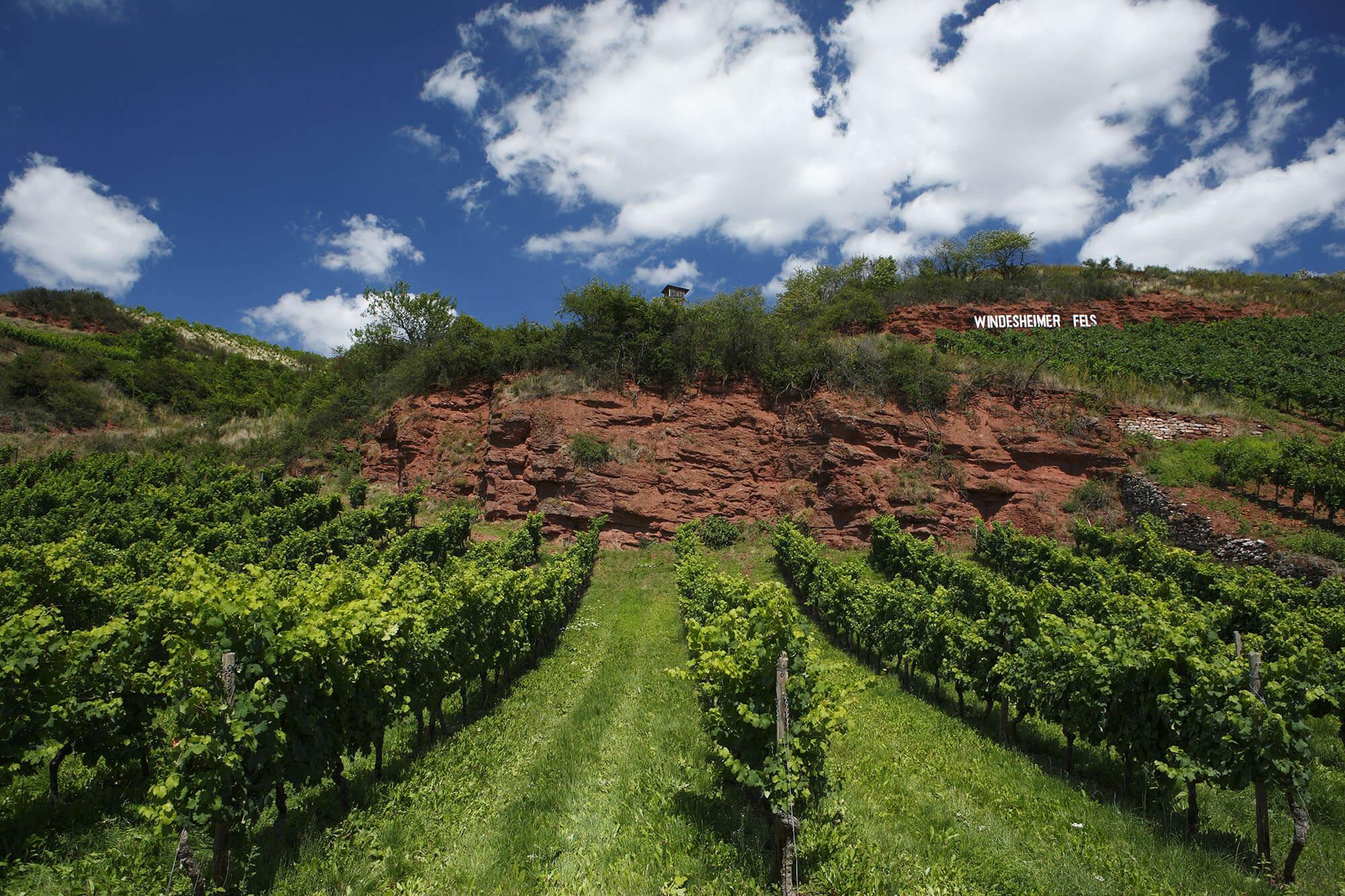 Nahe German Wines Usa
