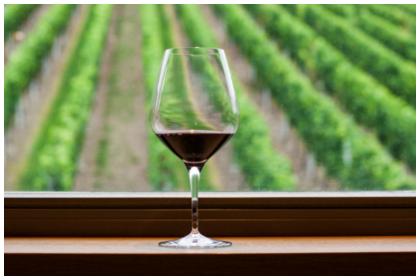 A Glass of Pinot Noir in the window of an vinyard